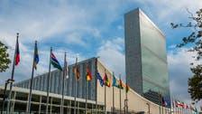 Estonia, Tunisia among five elected to UN Security Council