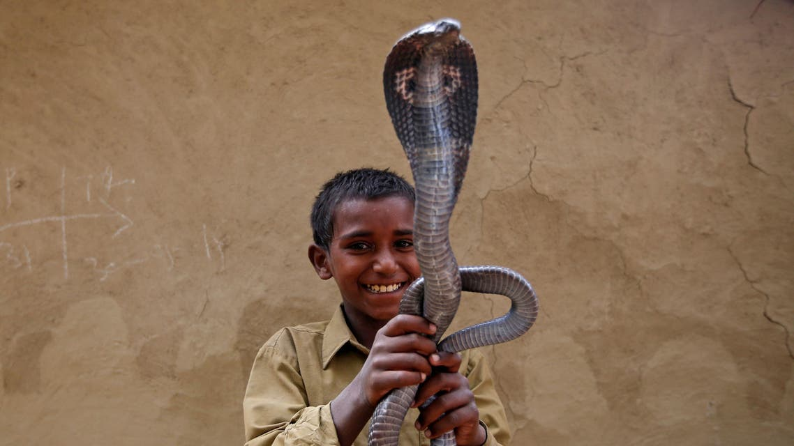 Ravi Nath poses for a photograph with a cobra snake in Jogi Dera (Snake charmers settlement), in the village of Baghpur, in the central state of Uttar Pradesh, India. REUTERS