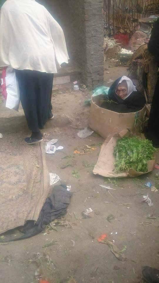 مسنة مصرية كفيفة تعيش في كرتونة.. وترفض المساعدة