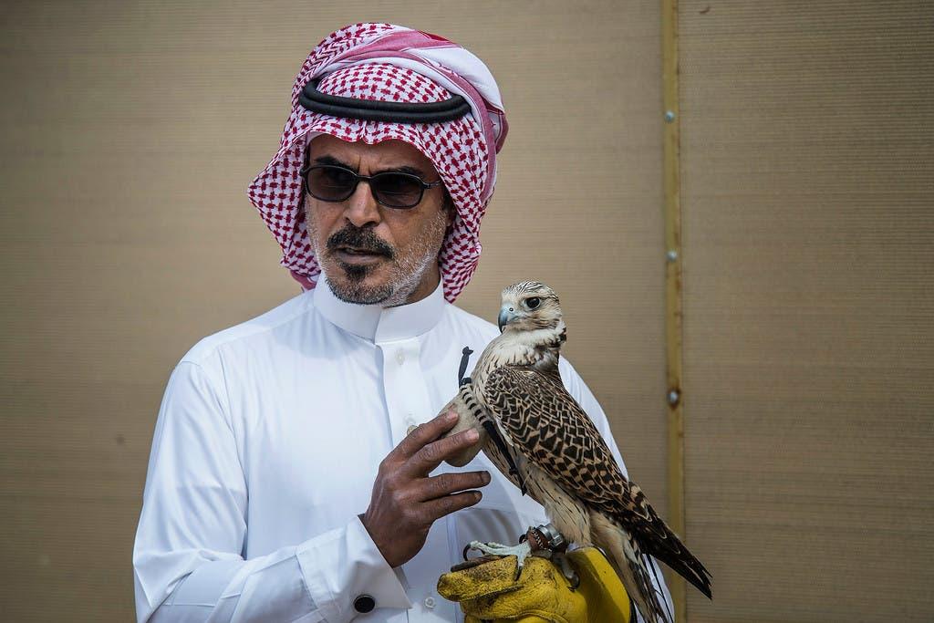 Falconry in the Gulf