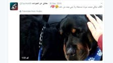 Saudi man advocates for animal rights one tweet at a time