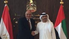 اتفاق على عقد اجتماع مصري إماراتي كل 6 أشهر
