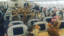 Falcons on a plane? Here's how GCC carriers regulate wild bird travel