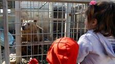 Animals starve in Mosul's decimated zoo
