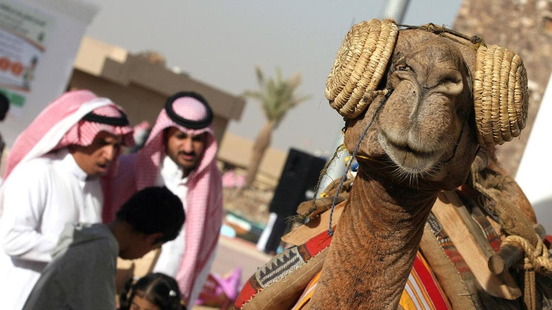 camel afp