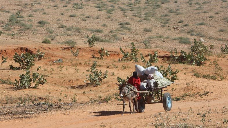 Archaeologist's Sudan discovery unlocks African secrets - Al
