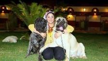 مصر: کتوں کی میزبانی کے لیے 5 اسٹار ہوٹل