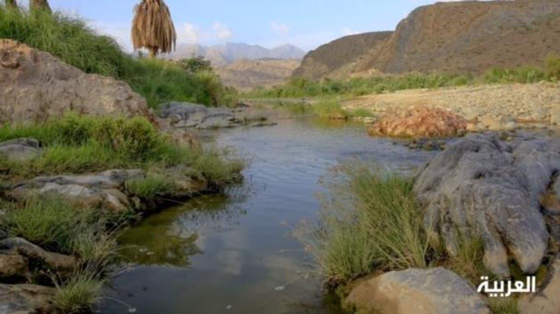 السعودية وادي