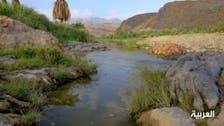 بالصور.. أجمل أودية السعودية