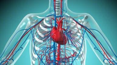 إنتاج شبكة أوعية دموية باستخدام الطباعة ثلاثية الأبعاد