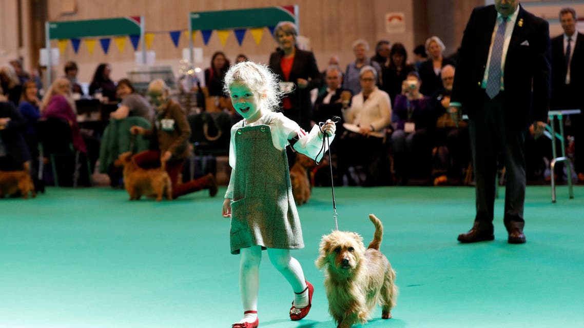 Who will be Britain's next top dog?