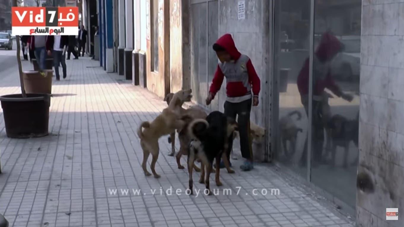 egypt streetchild