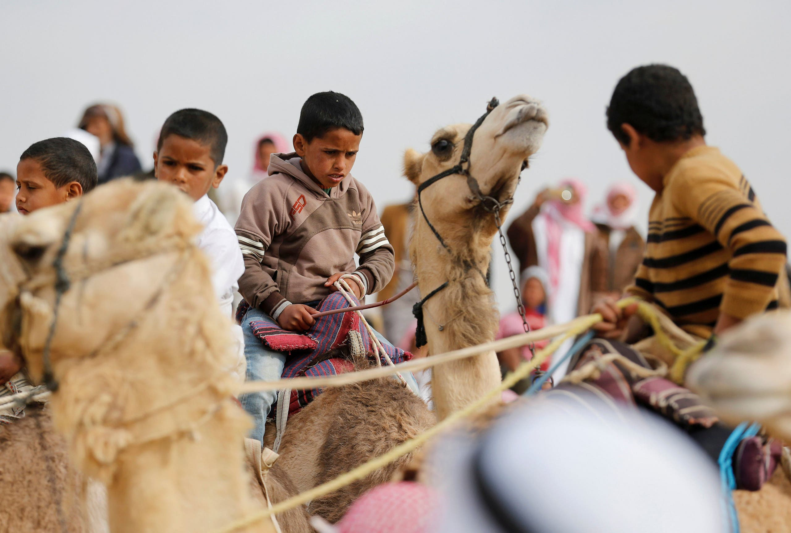 Jockeys, most of whom are children, ride their mounts as they prepare to compete in the International Camel Racing festival at the Sarabium desert in Ismailia, Egypt, March 21, 2017. Picture taken March 21, 2017. reuters