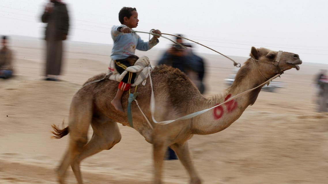 A child jockey, competes on his mount during the opening of the International Camel Racing festival at the Sarabium desert in Ismailia, Egypt, March 21, 2017. (Reuters)