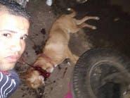 """مصر تبحث عن شاب ذبح كلباً ونشر صوره على """"فيسبوك"""""""