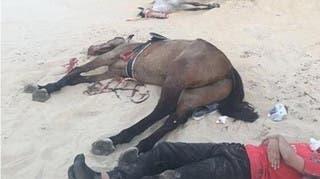 شاهد ماذا حدث لفارسين سقطا في منحدر رملي بالسعودية