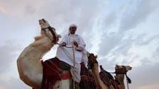 Saudi Arabia's King Abdulaziz Camel Festival