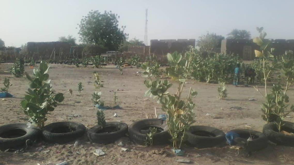 موريتانيا.. خطر العطش يهدد مدن الشرق