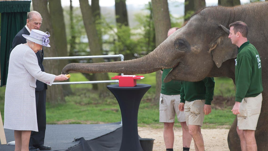 Britain's Queen Elizabeth, watched by Prince Philip, feeds an elephant during a visit to Whipsnade Zoo where she opened the new Centre for Elephant Care, in Dunstable, Britain April 11, 2017. REUTERS/David Rose/Pool