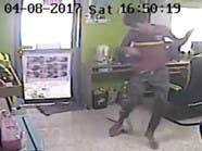 فيديو.. الثعبان الطائر يهاجم مقهى للإنترنت
