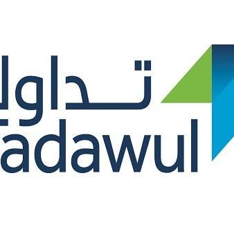نقاط تفصل السوق السعودية عن تسجيل أعلى إغلاق سنوي في 13 عاماً