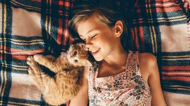التعامل مع الحيوانات الأليفة يقلل من الحساسية والبدانة!