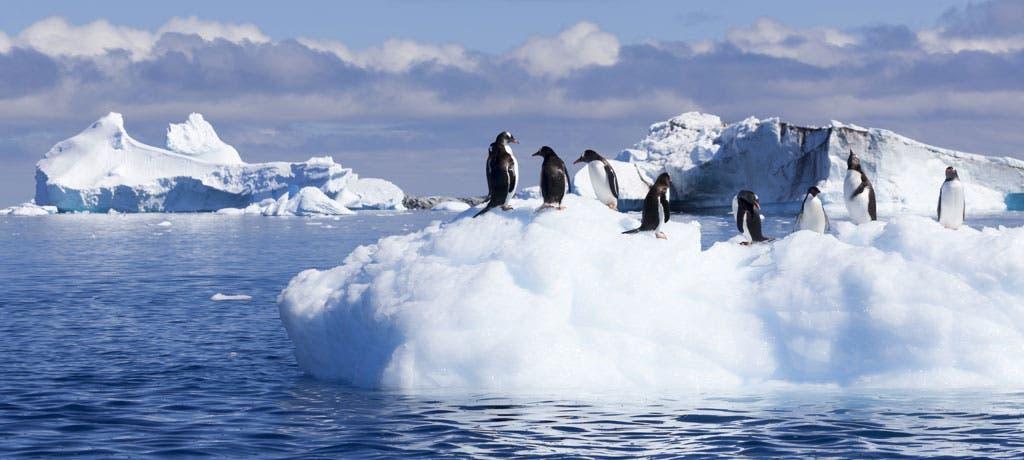 أنتاركتيكا هي من أفضل الأماكن التي يمكن اللجوء إليها في حال اندلعت حربا نووية