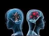 هل فعلاً عقل المرأة أنشط من عقل الرجل؟