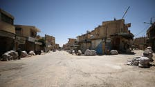 Final push on Syria's Raqqa to be launched in early summer