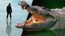 أسترالي نجح في تحرير نفسه من فكي تمساح!