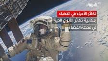هل يمكن الإنجاب في الفضاء؟
