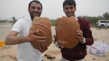 Bronze Age trading post found on Abu Dhabi's Sir Bani Yas Island