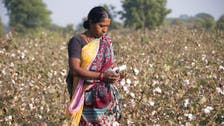 India needs more jobs for women to boost growth: World Bank