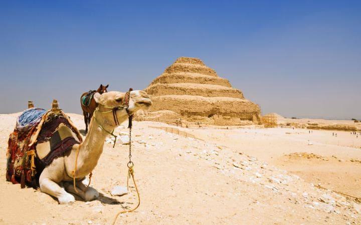 فك الشفرة الوراثية لمومياءات فرعونية يشير إلى تغير سكان مصر - صفحة 2 97f68810-deb5-4cd3-ba14-37e3f5748fa2