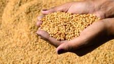 أسعار الأغذية عالمياً ترتفع في مارس للشهر العاشر على التوالي
