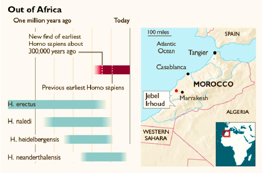 إلى اليمين موقع ارهود في المغرب، وإلى اليسار 4 أنواع من البشر سبقت العاقل بالعيش على الأرض