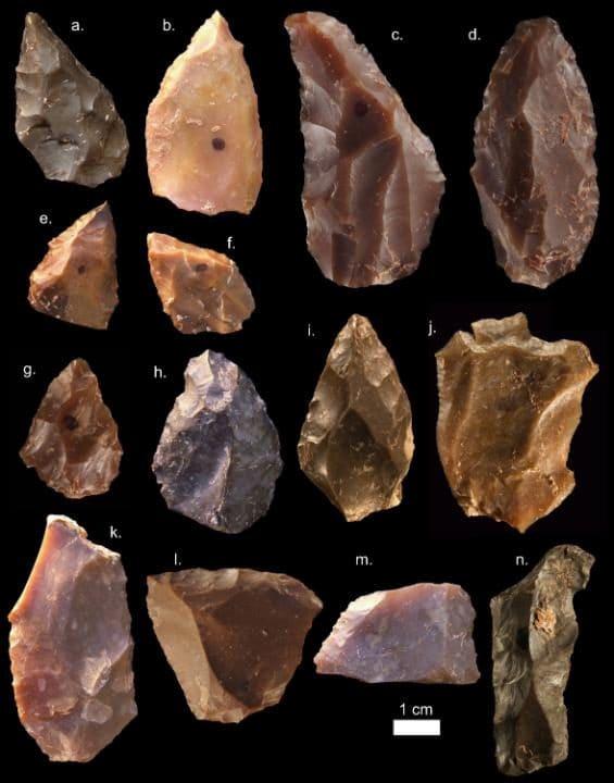 بعضی از ابزار های سنگی کشف شده از جبل ارهود