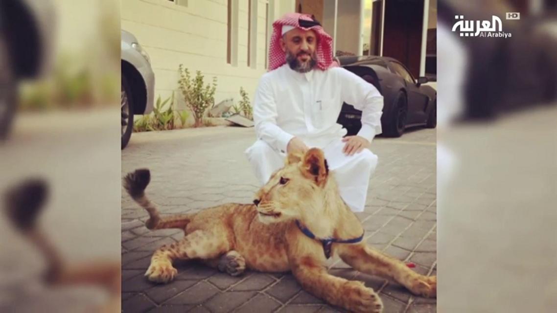 Khalifa al-Subaiy
