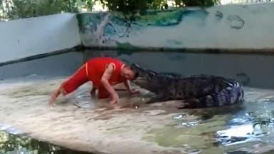 فيديو مروع.. تمساح غادر يلتهم رأس حارسه