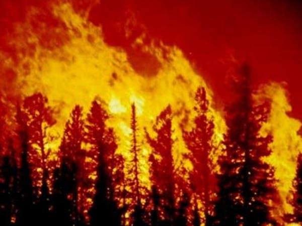 كاليفورنيا.. إجلاء 1500 شخص بسبب حرائق الغابات