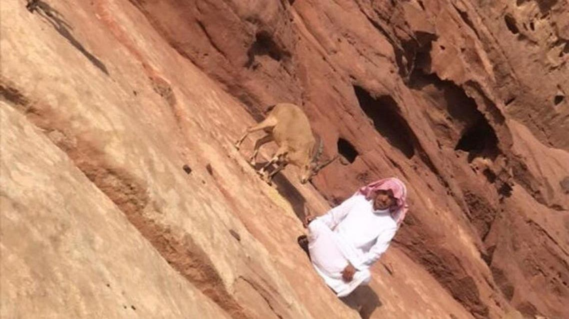 Mohammed al-Omrani, a 27-year-old Saudi, in the sanctuary for deer in Arkan Mountains. (Supplied)