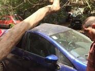 خرج من منزله فوجد شجرة تحتضن سيارته.. وهذا هو السبب