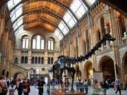 طفل يكتشف خطأ تاريخياً بمتحف بريطاني