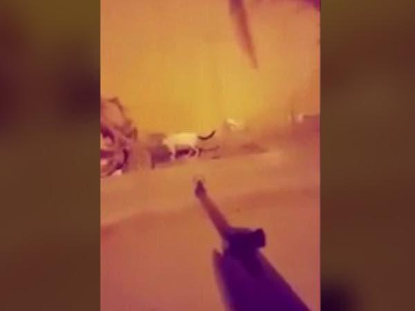 """إمارة مكة تلقي القبض على """"سفاح القطط"""""""