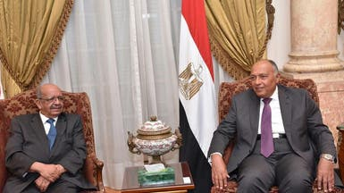 وزيرا خارجية مصر والجزائر يبحثان أزمتي ليبيا وقطر
