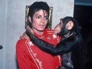 """هذا ما يفعله قرد مايكل جاكسون الشهير بـ """"بيبلز"""""""