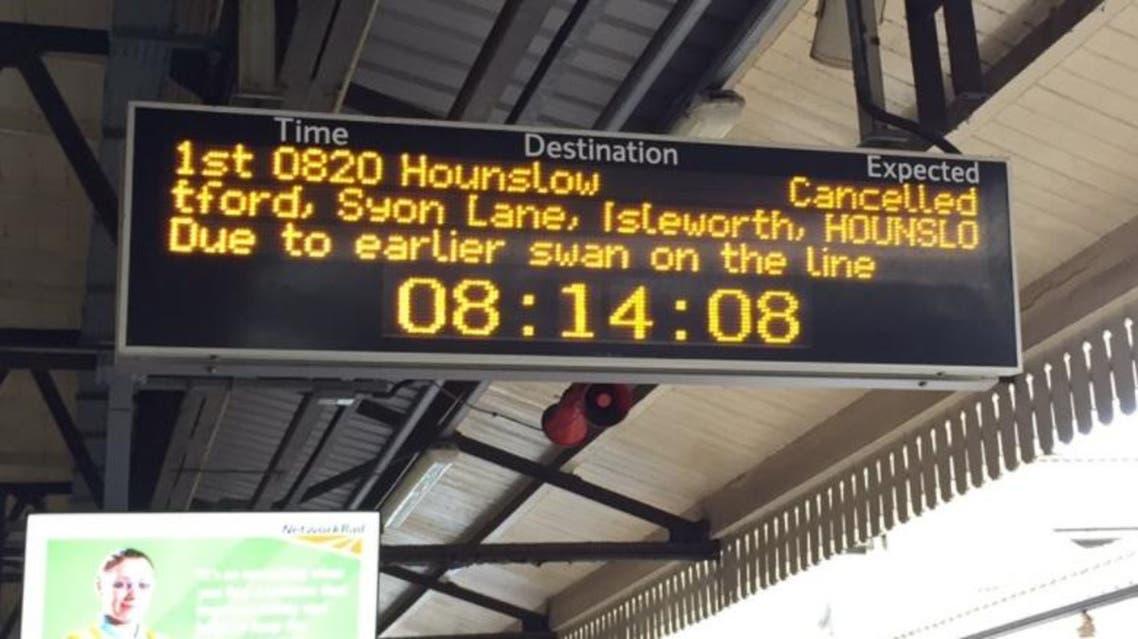 london tube swan twitter