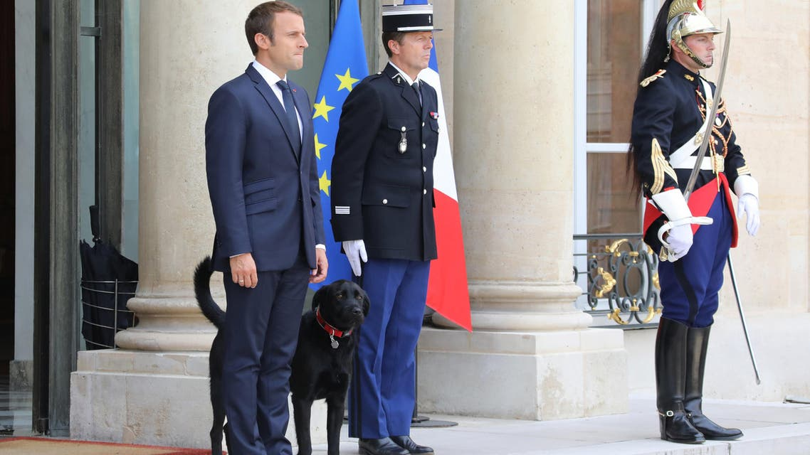 French president Emmanuel Macron (2L) stands outside the Elysee Palace in Paris on August 28, 2017, after a government meeting flanked by a dog named Nemo. (AP)