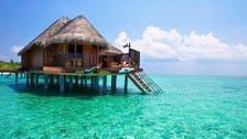 Bali..أيقونة السياحة الإندونيسية تجذب زوارا من نوع آخر