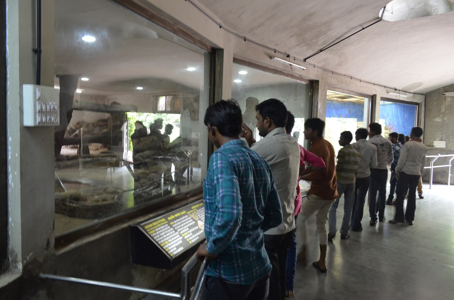 Visitors at the reptile house in the zoo in Ahmedabad. (Supplied)